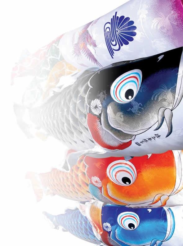 吉兆 慶祝の鯉 撥水加工 ポリエステルジャガード 家紋・名入れ可能