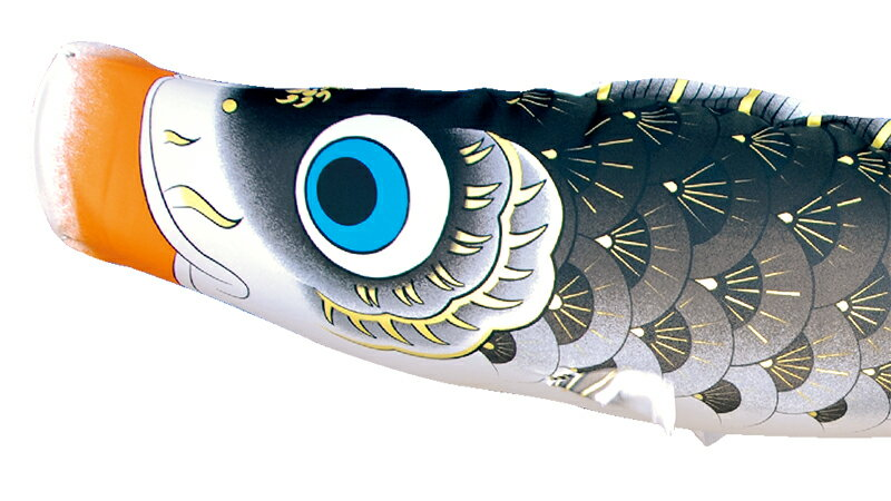 夢はるか 古典鯉幟 撥水加工 ポリエステルメロンアムンゼン 家紋・名入れ可能
