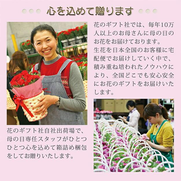 毎年10万本の花をお届けしております。