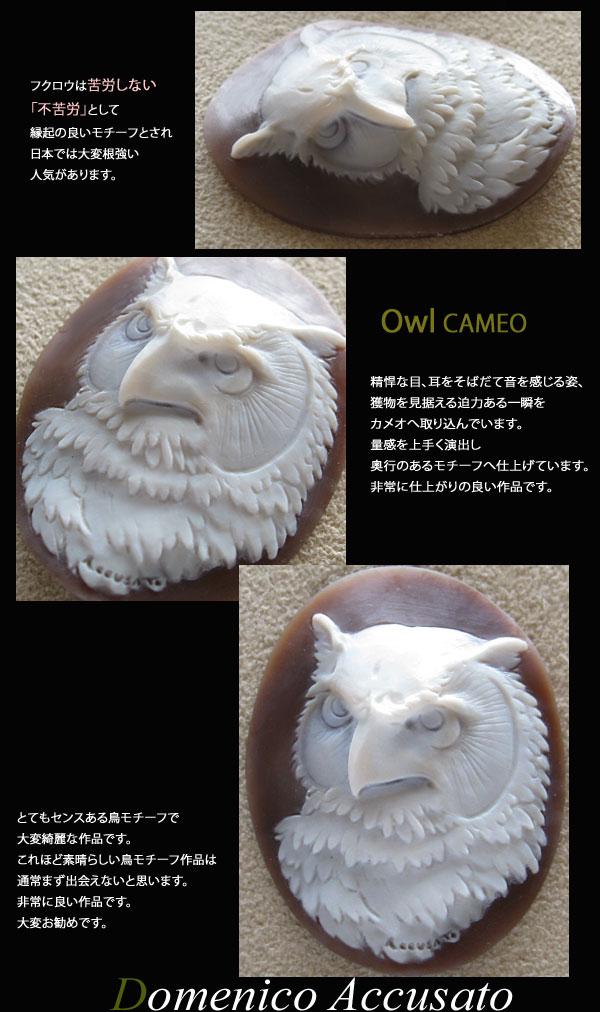 Owl ミミヅク 不苦労 カメオ