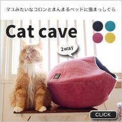 吸い込まれる猫続出!catcaveでかくれんぼ