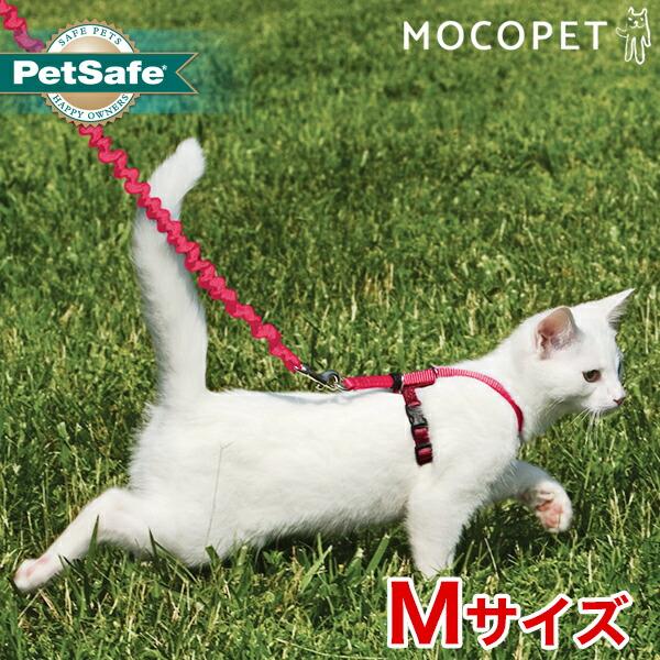 愛猫と楽しくお散歩ができるハーネスと伸縮性のあるリード
