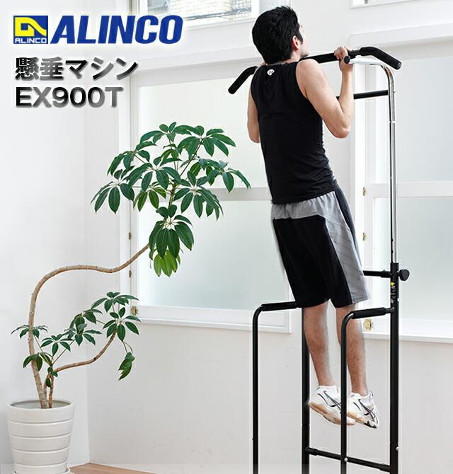 ALINCO(アルインコ)懸垂マシン EX900T
