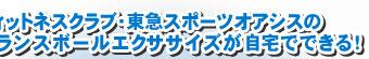 フィットネスクラブ・東急スポーツオアシスのバランスボールエクササイズが自宅でできる!