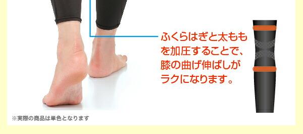 ふくらはぎと太ももを加圧することで膝の曲げ伸ばしがラクになります。