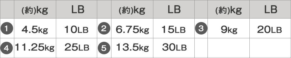 可変式ケトルベル13.5kg