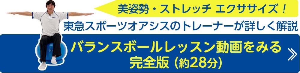 トレーナーレッスン動画28分