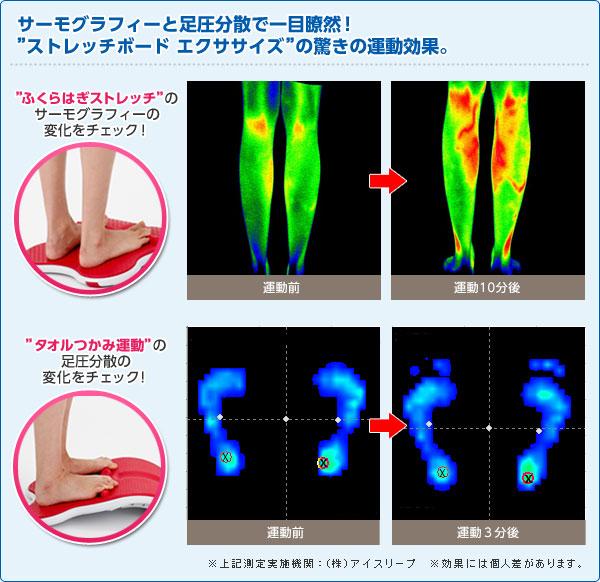 サーモグラフィーと足圧分散で一目瞭然!ストレッチボードエクササイズの驚きの運動効果