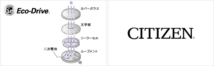 シチズン キー エコドライブ ソーラー EG2800-53A レディース