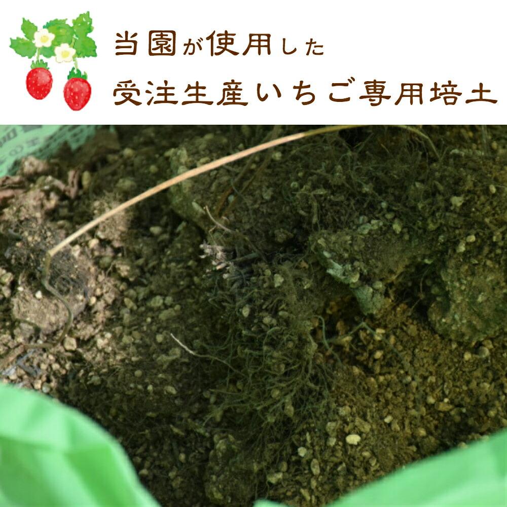 当園が使用している受注生産のいちご専用培土