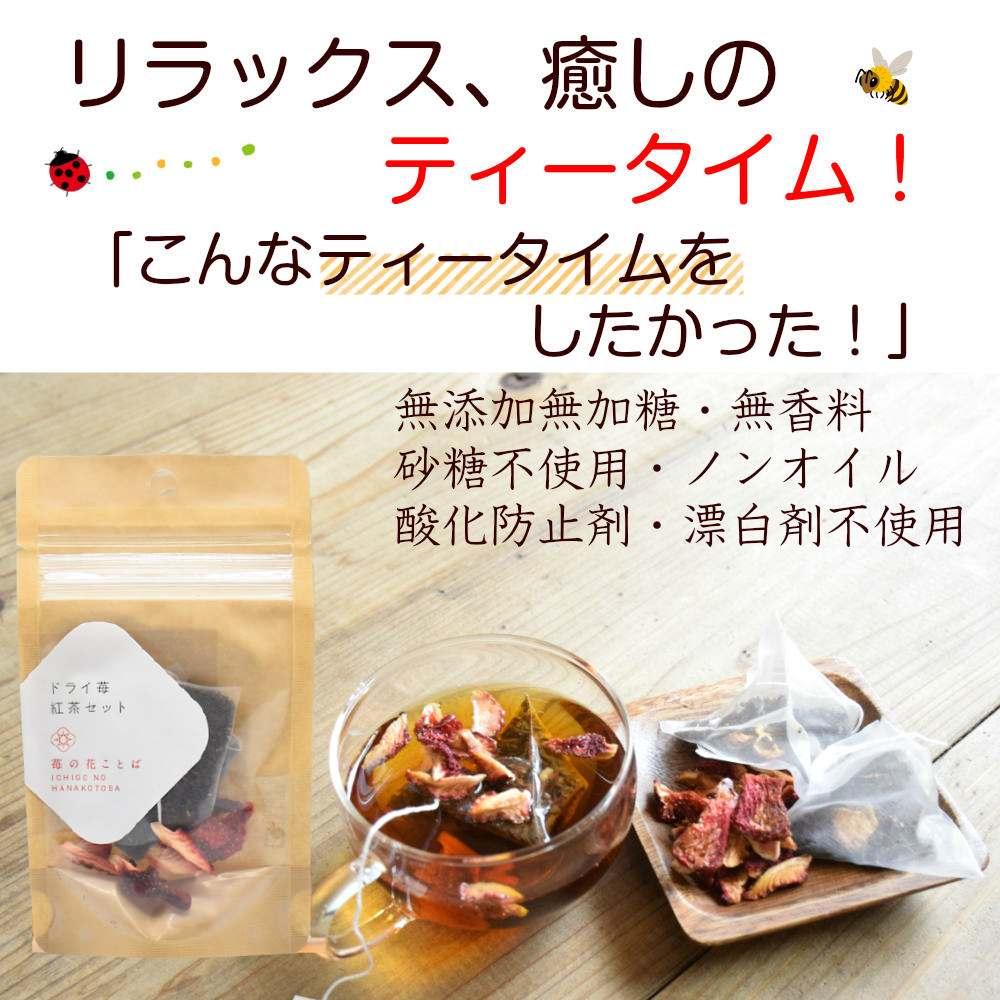 ドライフルーツ 砂糖不使用 無添加 国産 フルーツ 果物 ドライいちご 食べる紅茶 フルーツ