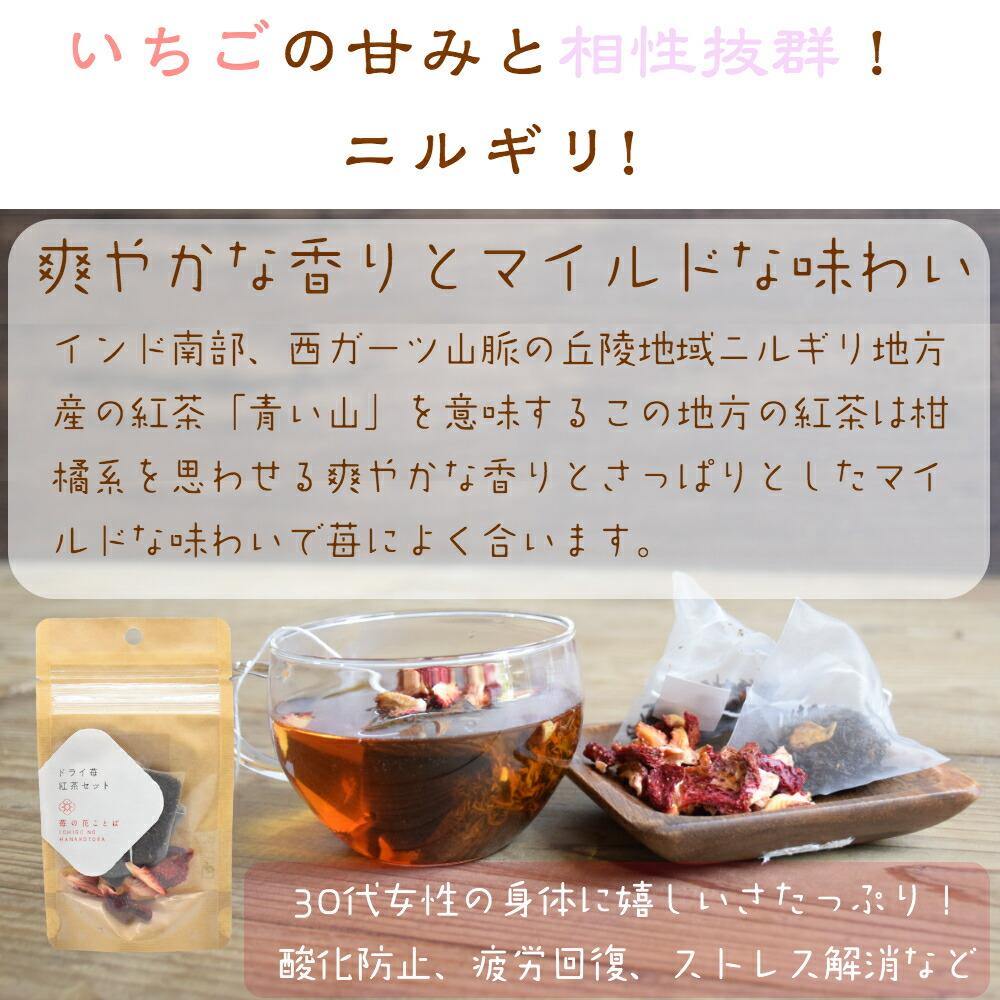 ドライフルーツ 砂糖不使用 無添加 国産 フルーツ 果物 ドライいちご 食べる紅茶 フルーツ 越後姫
