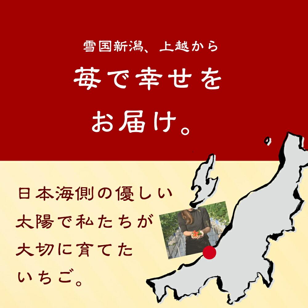 雪国新潟、上越から苺で幸せをお届け。日本海側の優しい太陽で私たちが大切に育てた苺。