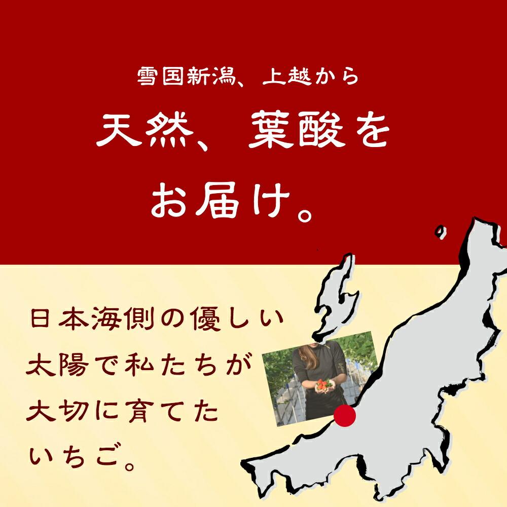天然葉酸をお届け。日本海側の優しい太陽で私たちが大切に育てたいちご