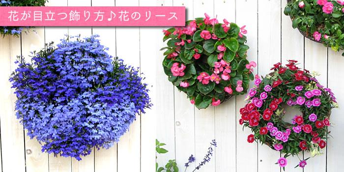 花が目立つ飾り方♪花のリース