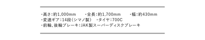 ロードバイク GT700S 各部サイズ