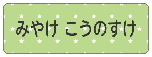 1602-4.緑星柄C