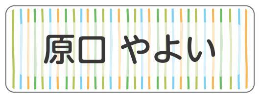 1606-1.緑細めストライプ柄