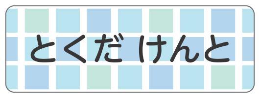 1608-2.青ブロックチェック柄