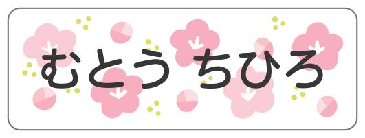 1613.花柄