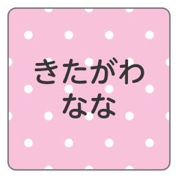 1601-1.ピンクドット柄B