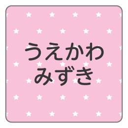 1602-1.ピンク星柄C