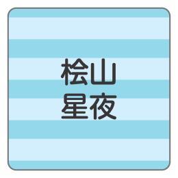 1604-2.青ボーダー柄B