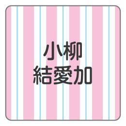 1605-1.ピンク太めストライプ柄