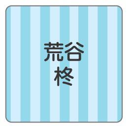 1607-2.青2色ストライプ柄