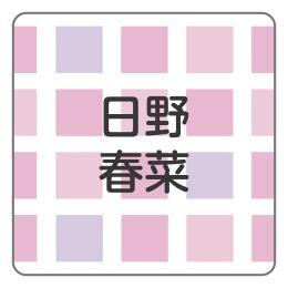 1608-1.ピンクブロックチェック柄