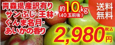 りんご10kg