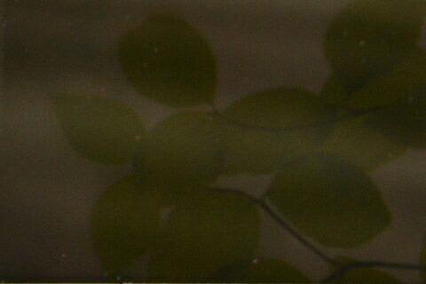 ナイトヴィジョンシリーズイメージ画像
