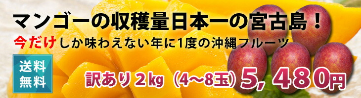 宮古島産訳ありマンゴー1kg2980円