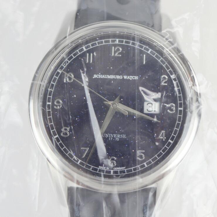 Schaumburg シャウボーグ パノラマ リミテッド ゴールドストーン 腕時計 PANORAMA-GDSTN ステンレススチール クロコダイル ゴールドストーン