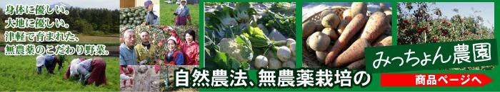無農薬 野菜 にんにく ニンニク ごぼう ゴボウ 長いも