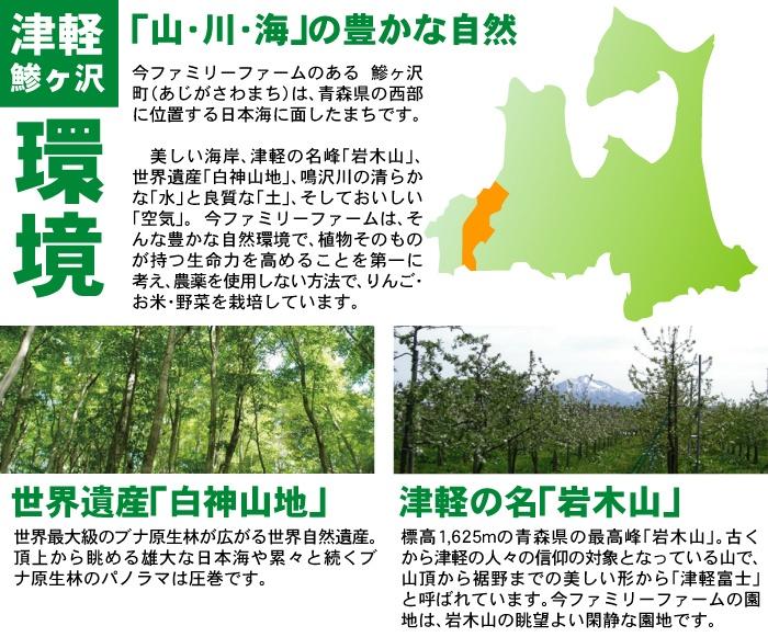 野菜 ベジタブル 果物 フルーツ 完全 無農薬 安心 安全 青森県産 産地直送