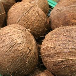 ソリッドゴールド パウチ ビーフ&ココナッツミルク 85g