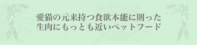 iti 生肉に近いキャットフード