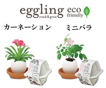 エッグリング エコフレンドリー ミニバラ カーネーション sst303-370306
