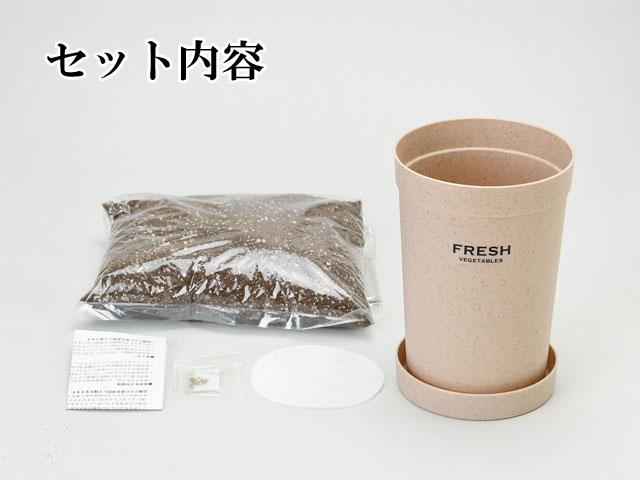 栽培キット おうちで 根菜栽培 050
