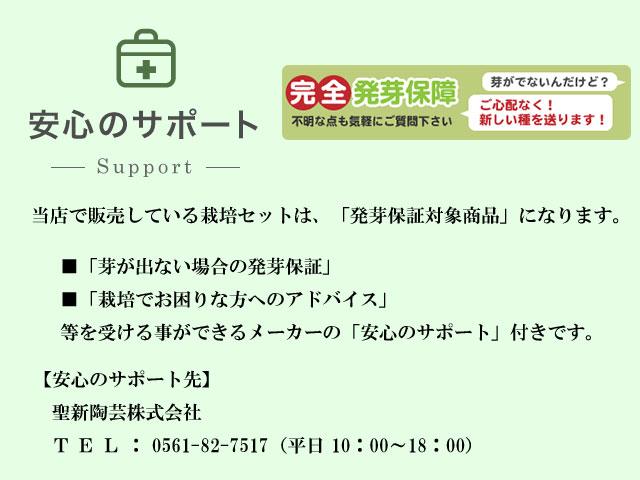 栽培セット 発芽保証 安心のサポート sst000-001