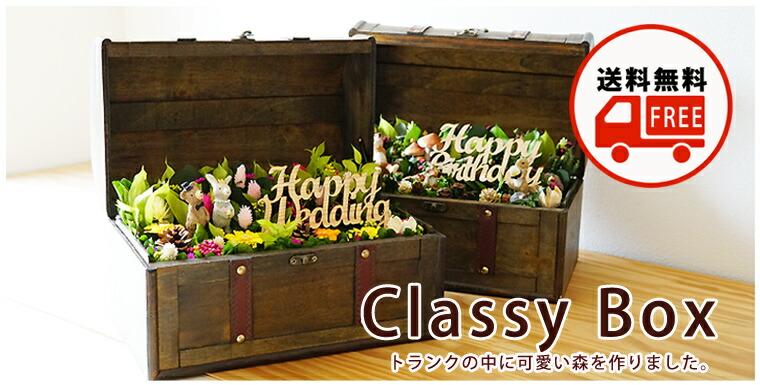 "Classy"""