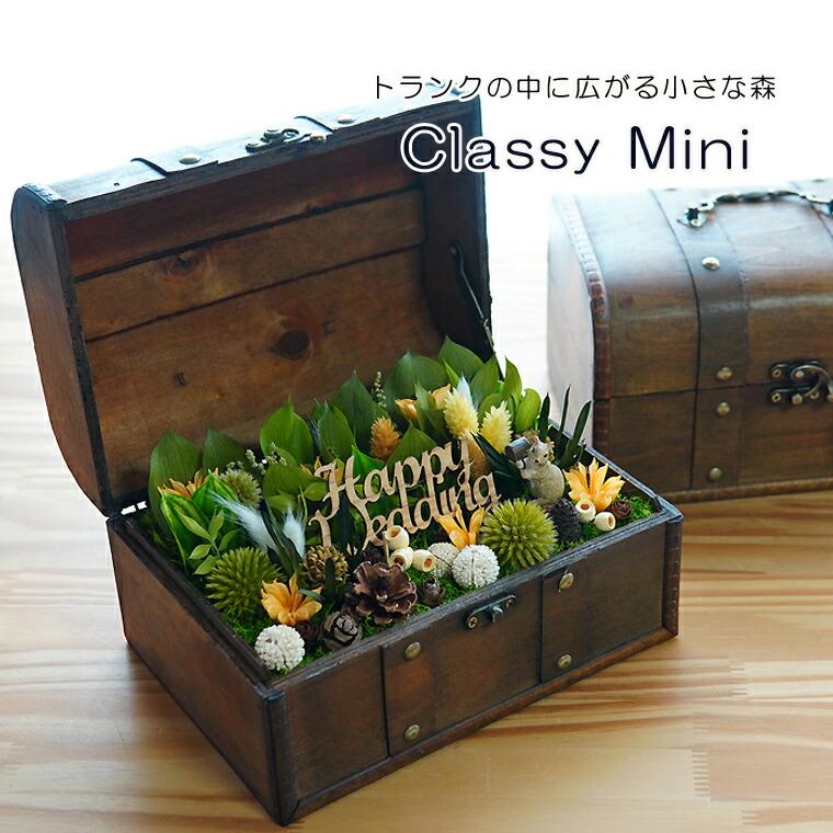 Classy mini