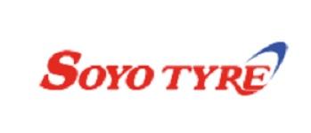 (ソーヨータイヤ  #30-AIIIゴールドチャンピオンT.T.) Gold Champion T.T. SOYO TYRE #30-AIII