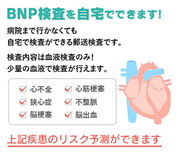 検査 bnp 血液