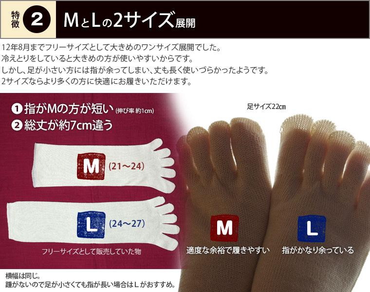 MとLのサイズ展開