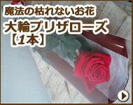 枯れない魔法のお花 大輪プリザローズ花束(1本)