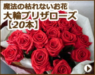 枯れない魔法のお花 大輪プリザローズ花束(20本)