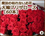 枯れない魔法のお花 大輪プリザローズ花束(60本)