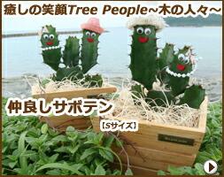 癒しの笑顔Tree People 〜木の人々〜 仲良しサボテン【Mサイズ】